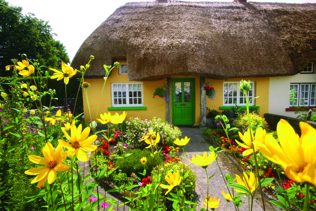 Thatched yellow cottage, Adare village, Limerick, Ireland