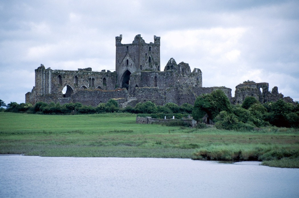 Dunbrody Abbey, Arthurstown, Co. Wexford