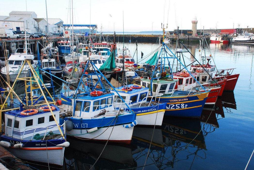 Colourful boats in Dunmore East's fishing harbour, Co. Waterford