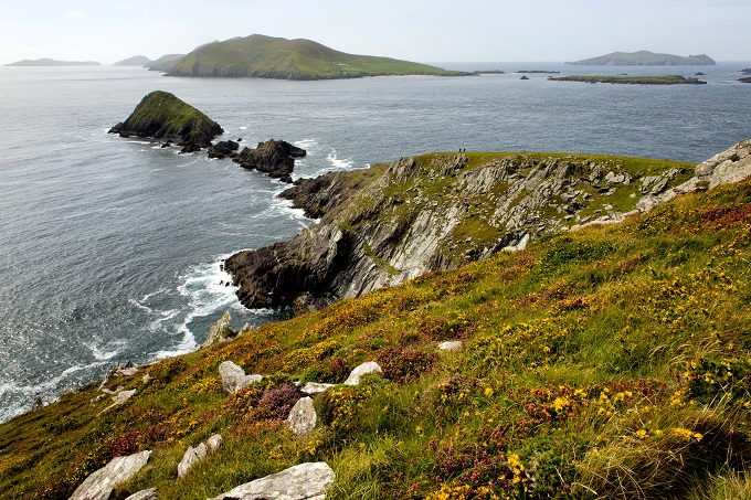 The Dingle Way offers views of the surrounding cliffs and sea